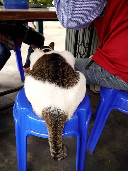 19-泰國普吉島 跟著計程車司機吃美食 吳酸酸.JPG