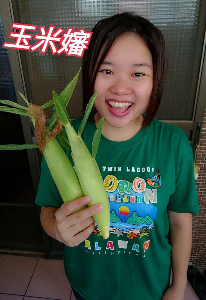 46-雲林元長北海道玉米.jpg
