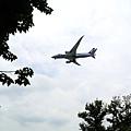 08-圓山公園 大飛機.JPG