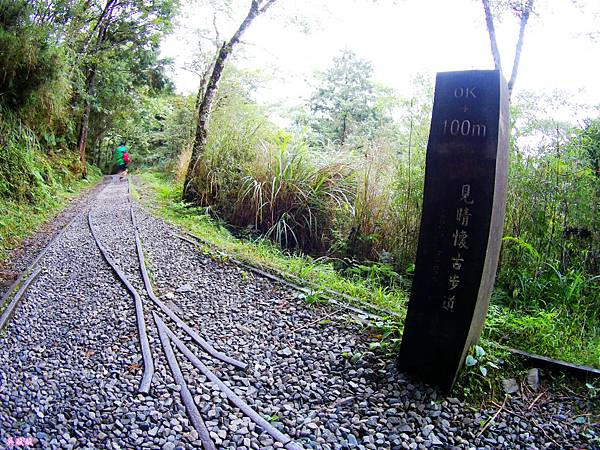 12-宜蘭太平山 見晴懷古步道.JPG