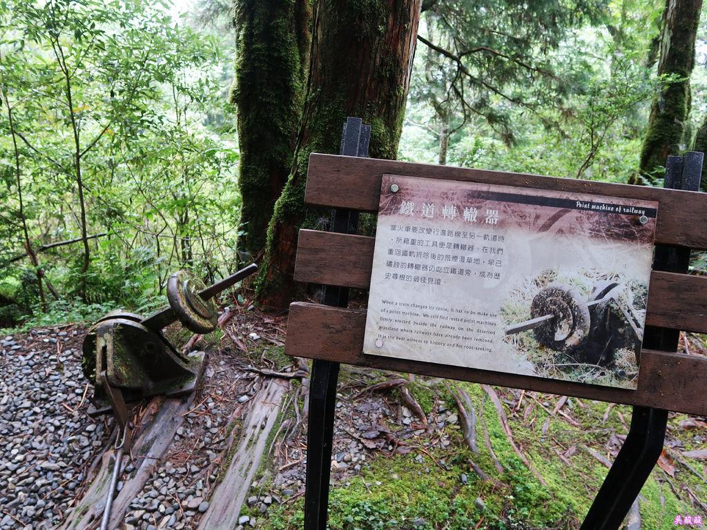 24-宜蘭太平山 見晴懷古步道.JPG