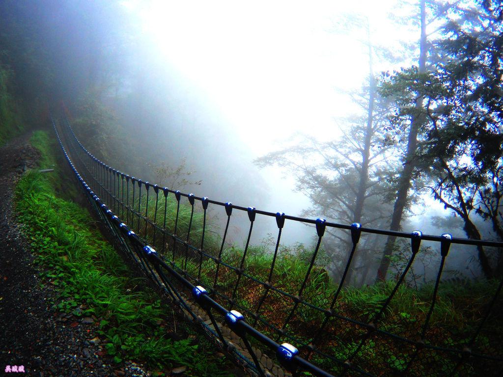 62-宜蘭太平山 見晴懷古步道.JPG