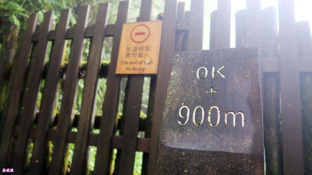 84-宜蘭太平山 見晴懷古步道.JPG