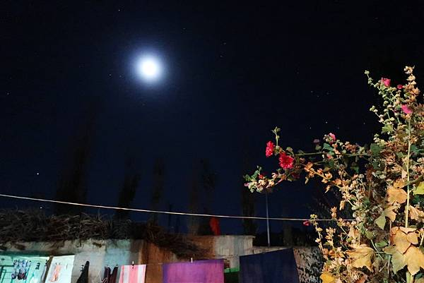 133-吳酸酸2017年西藏 阿里古格王朝.JPG