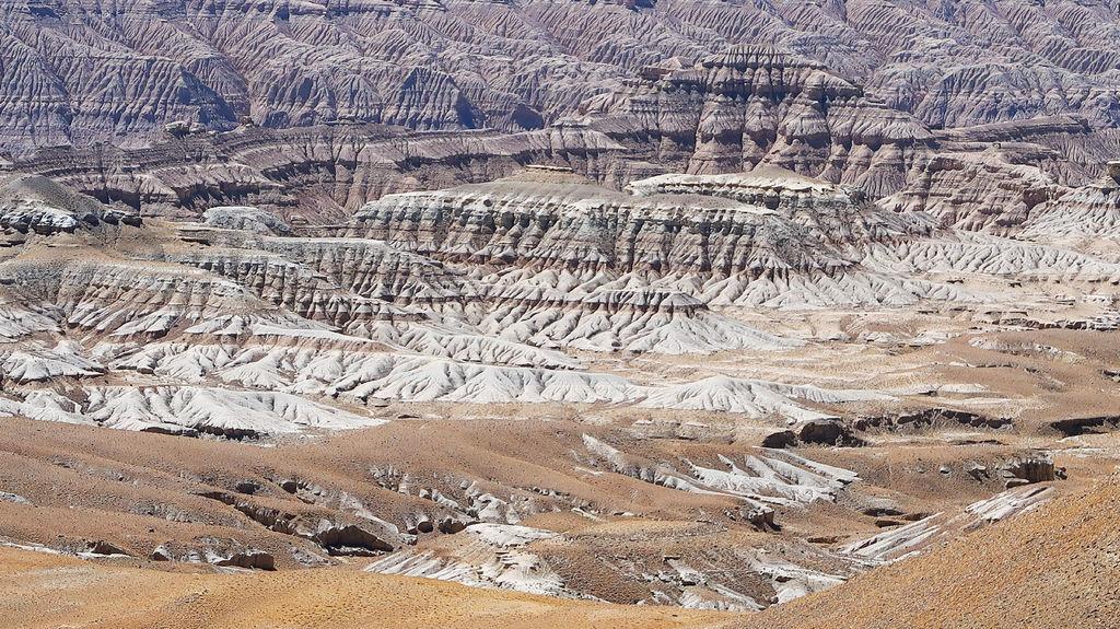 39-西藏阿里 一路向西 札達土林 阿里吃火鍋 酸酸西藏.JPG