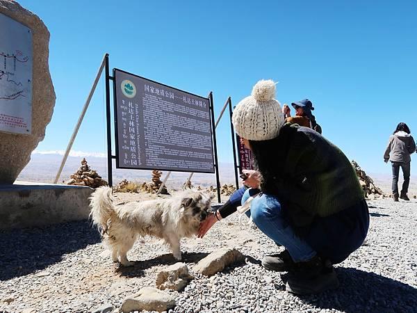 41-西藏阿里 一路向西 札達土林 阿里吃火鍋 酸酸西藏.JPG