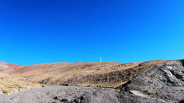 72-西藏阿里 一路向西 札達土林 酸酸西藏.JPG