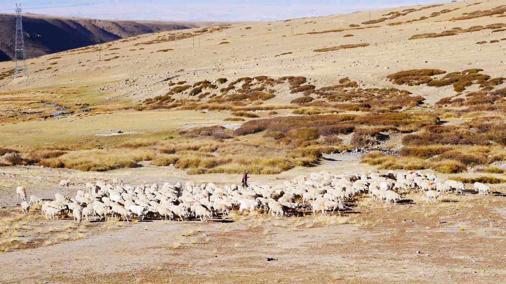 73-西藏阿里 一路向西 札達土林 酸酸西藏.JPG