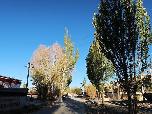 46-西藏阿里 札布讓村 土林民宿 藏民家庭旅館.JPG