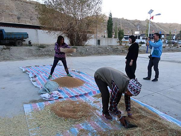 52-西藏阿里 札布讓村 土林民宿 藏民家庭旅館.JPG