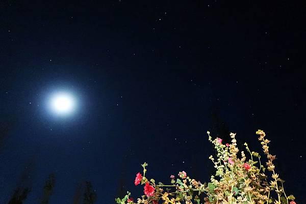 79-西藏阿里 札布讓村 土林民宿 藏民家庭旅館 星空 流星.JPG