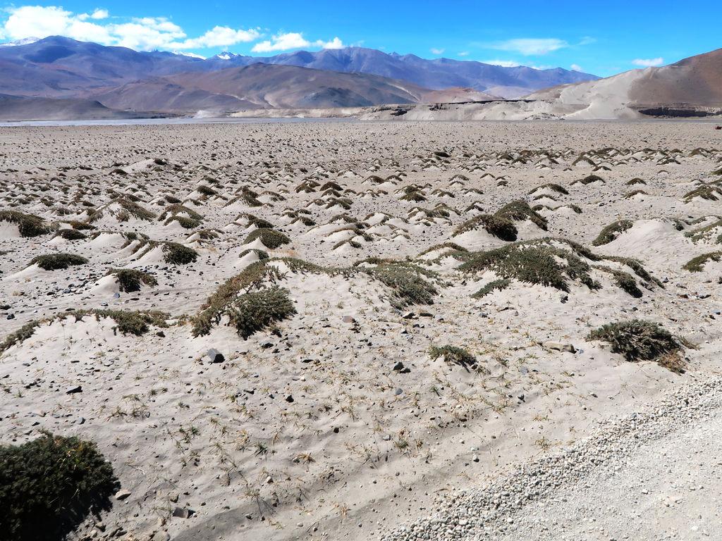 06-前往5200米珠峰大本營途中 西藏吳酸酸.JPG