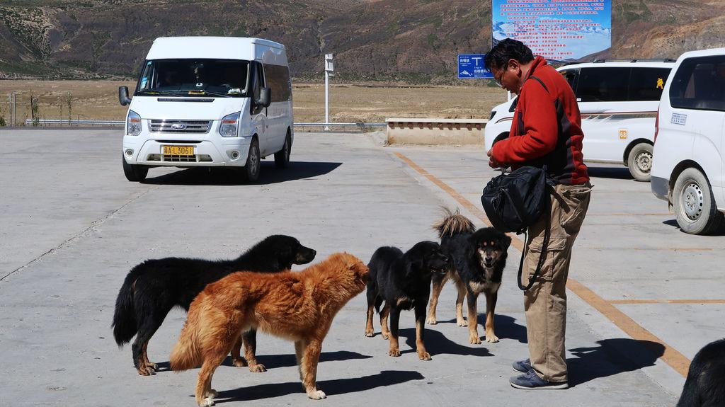 24-前往5200米珠峰大本營途中 西藏吳酸酸.JPG