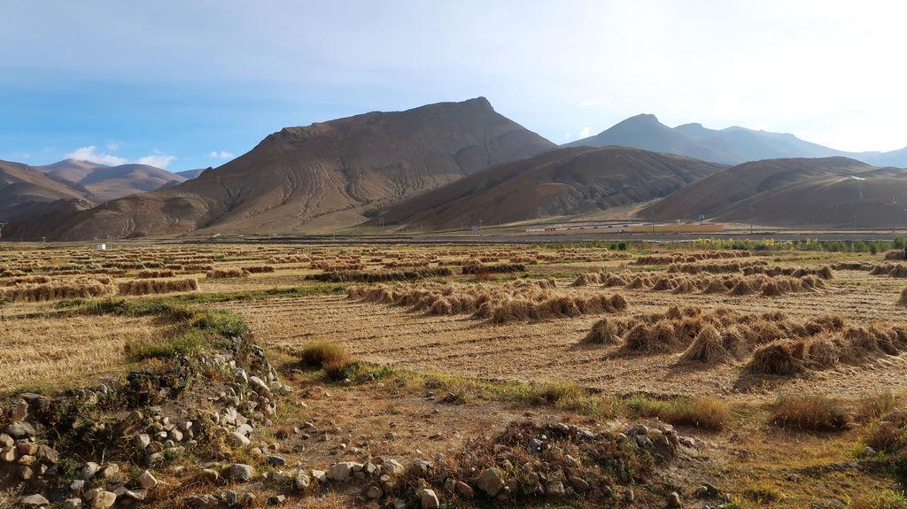96-珠峰保護區村莊 西藏吳酸酸.JPG