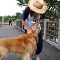 a76-桃園花彩節 龍潭場 遇到可愛黃金獵犬.JPG