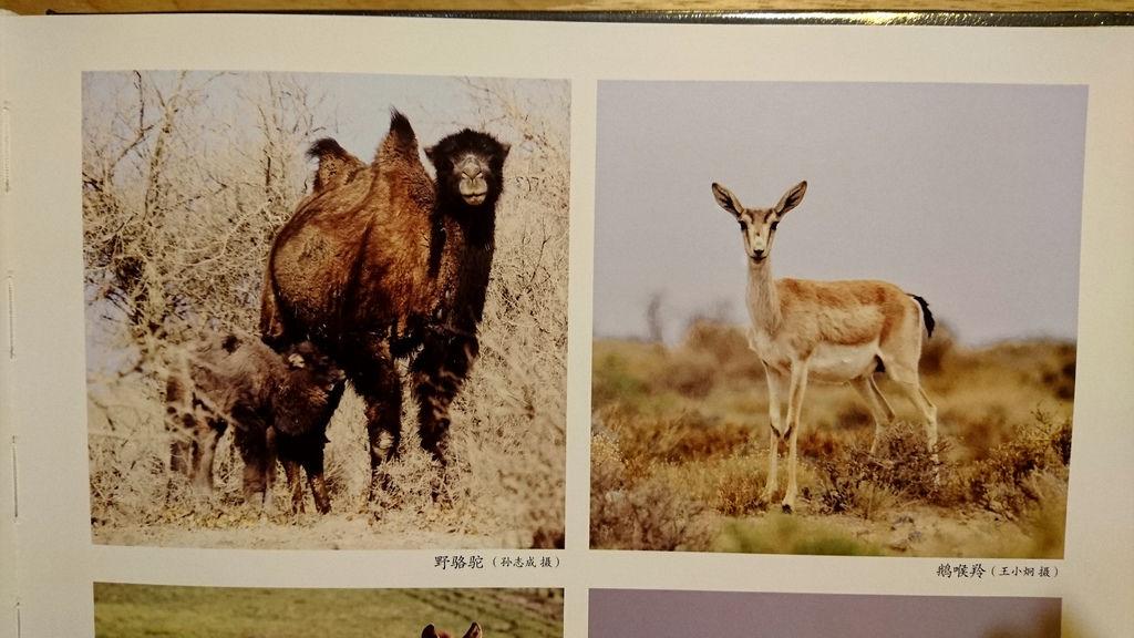 52-益品書屋 EP-BOOKS(台北市仁愛路).JPG
