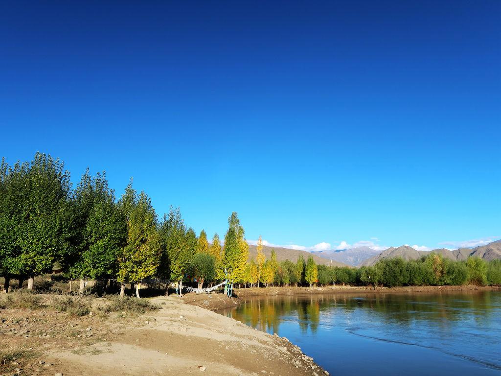 08-西藏吳酸酸雅魯藏布江 前往羊卓雍措 找藏獒拍照.JPG
