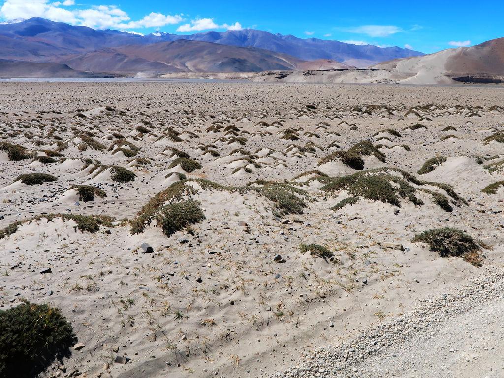 20-前往西藏珠峰大本營 聖母峰帳篷區 吳酸酸.JPG