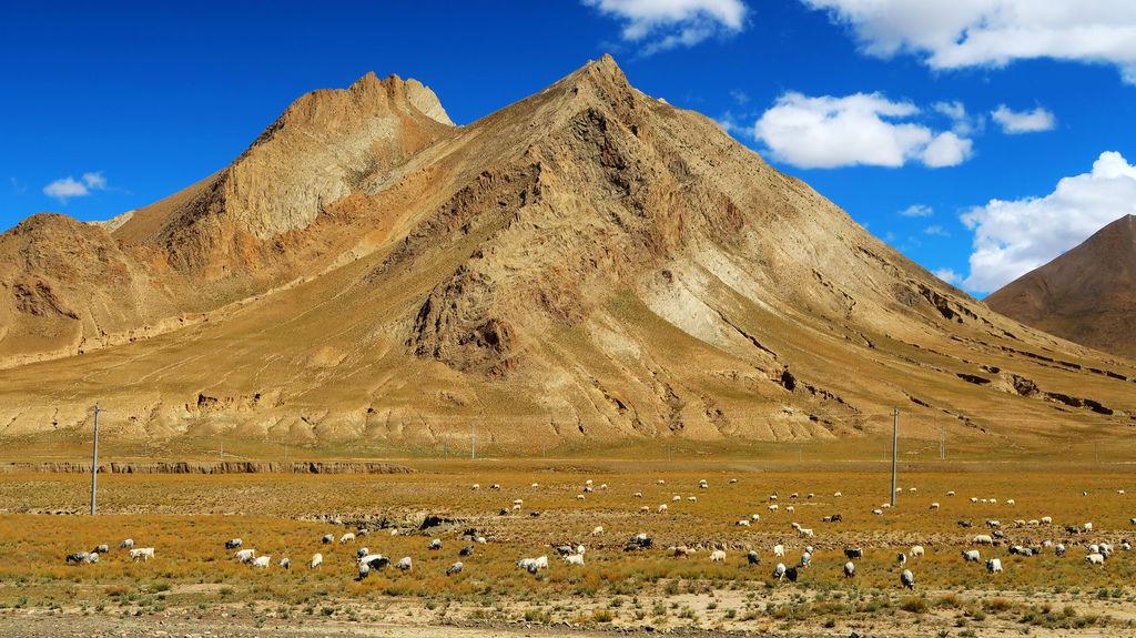 32-前往西藏珠峰大本營 聖母峰帳篷區 吳酸酸.JPG