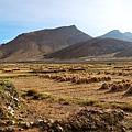 02-從珠峰大本營到薩嘎一路好玩 薩嘎可愛的地方.JPG