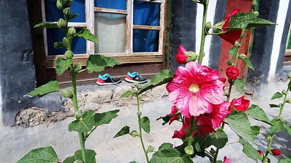 14-從珠峰大本營到薩嘎一路好玩 薩嘎可愛的地方.JPG