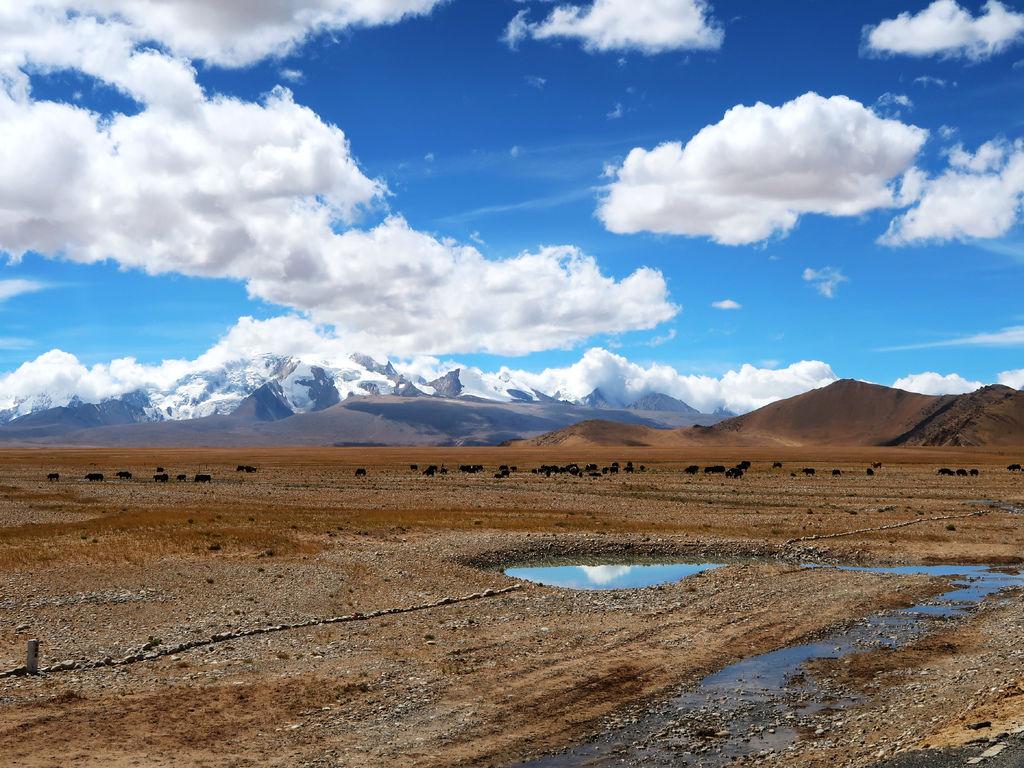 17-從珠峰大本營到薩嘎一路好玩 薩嘎可愛的地方.JPG
