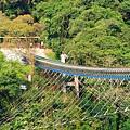 61-桃園復興新溪口吊橋.JPG