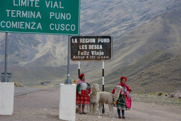 Cusco to Puno bus tour-La Raya-兩城市間最高點 (18).JPG