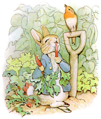 the-tale-of-peter-rabbit-8.jpg
