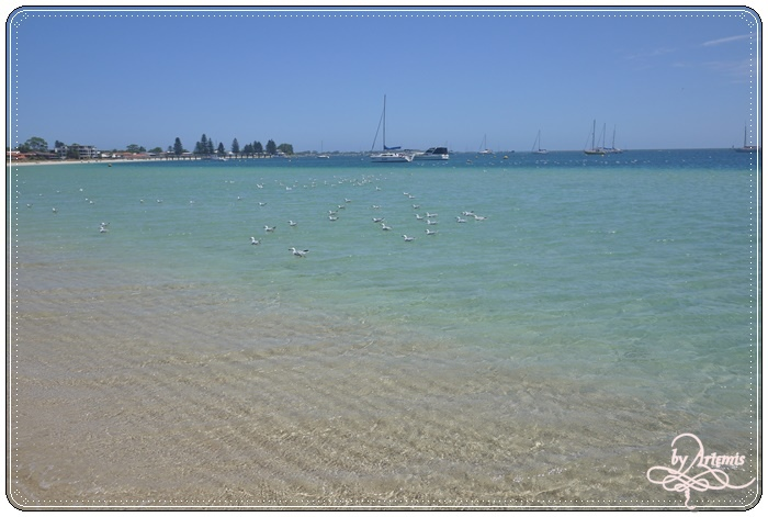 Perth Day2 74.JPG