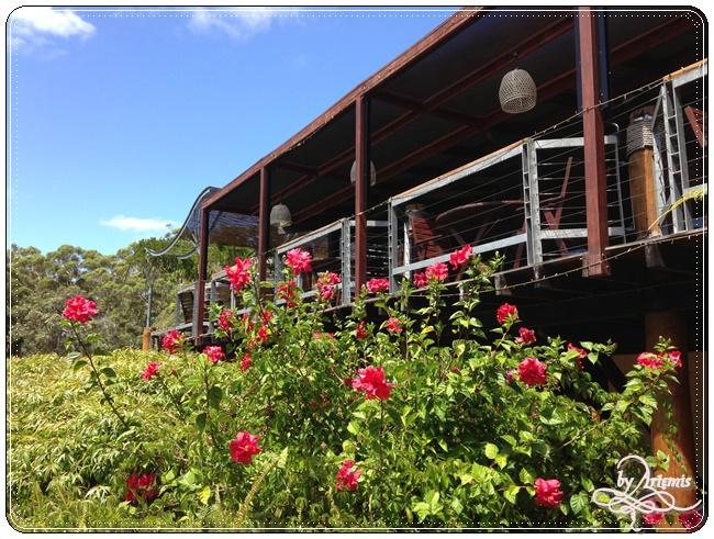 Leeuwin Estate Winery 39.JPG