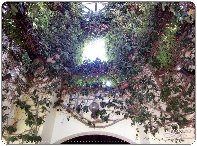 Leeuwin Estate Winery 28.JPG