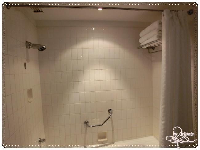 Hilton Hotel Perth (11).JPG