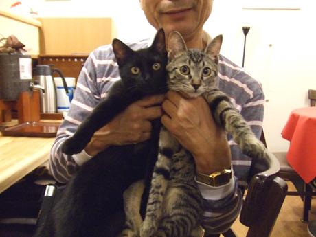 小澤康磨和他的貓.jpg