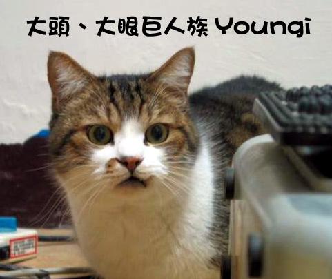 Youngi1.jpg