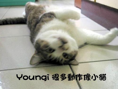 Youngi2.jpg
