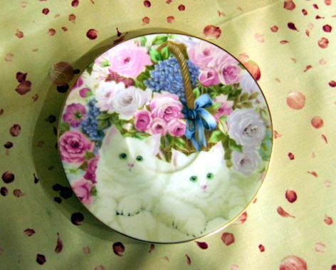 玫瑰美貓.jpg