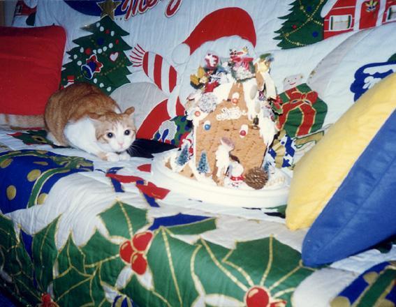 狗狗的聖誕節2.jpg