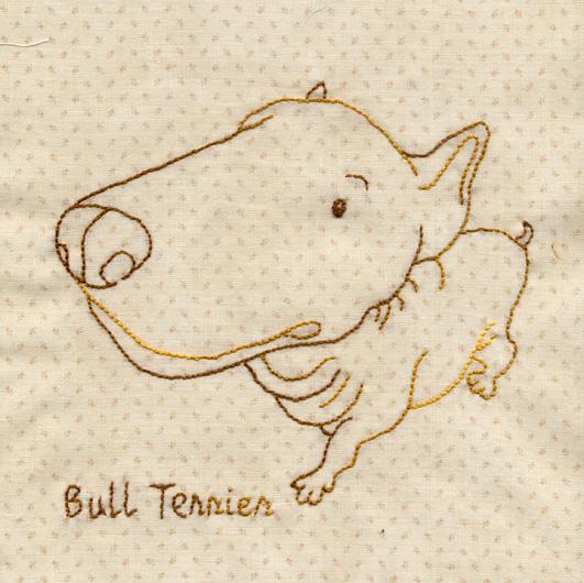 大頭Bull-Terrier.jpg