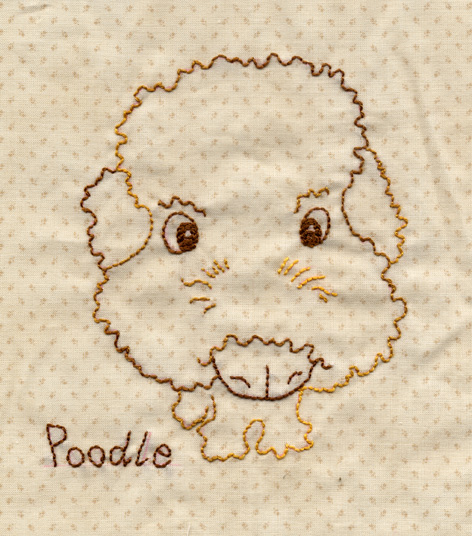 大頭Poodle.jpg