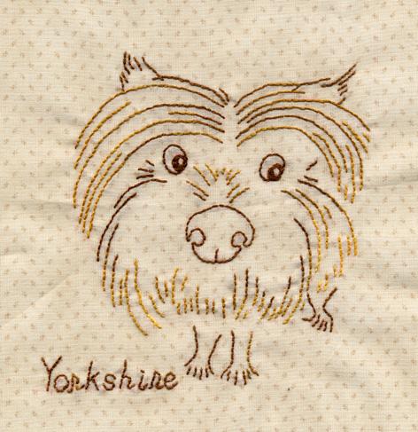 大頭Yorkshire.jpg