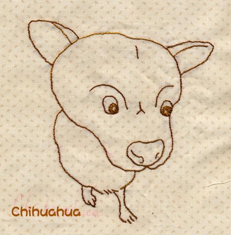 大頭chihuahua.jpg
