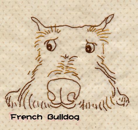 大頭法國梗犬.jpg