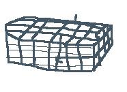 捕貓籠.jpg