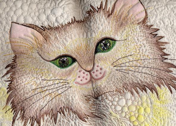 貓貓.jpg