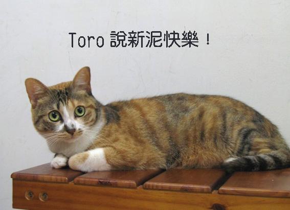 Toro說新年快樂.jpg