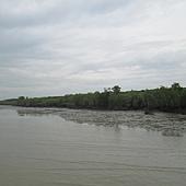 IMG_9146-右邊印尼及笨珍市龜咯鹹水港