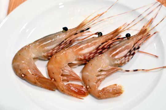 大倉久和-歐風10-生蝦
