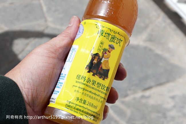 西藏-拉薩-布達拉宮-004.jpg