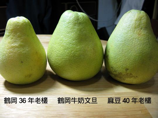 文旦柚子大PK-1.jpg